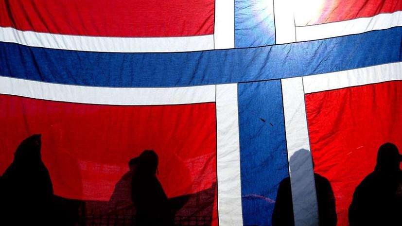 Норвежский шпиц на американской поводке