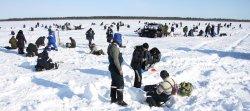 Зимняя ловля подлещика и леща на озёрах
