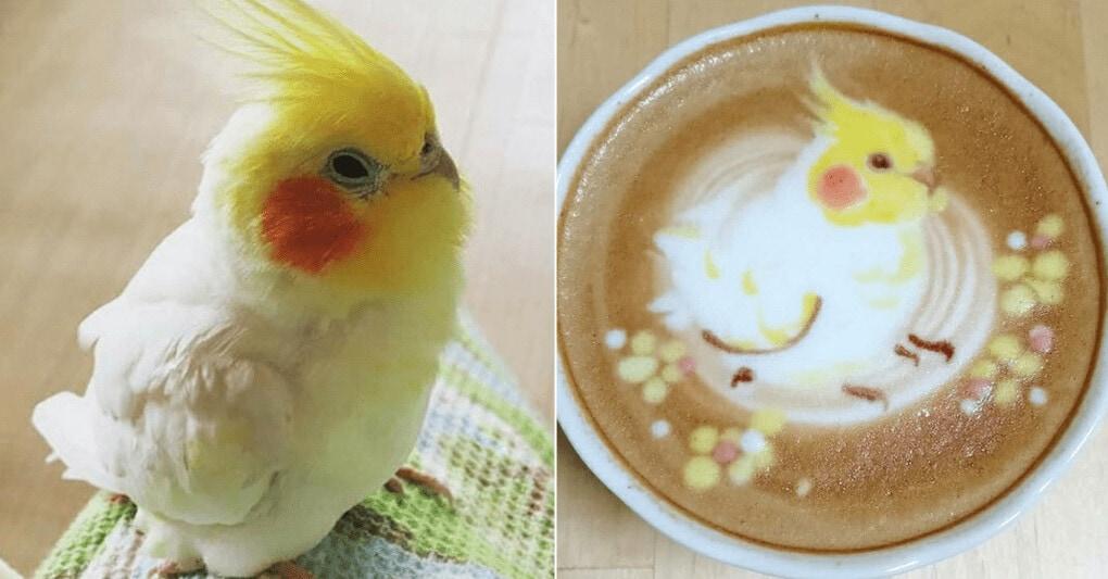 Художница смешивает свою страсть к латте с любовью к птицам