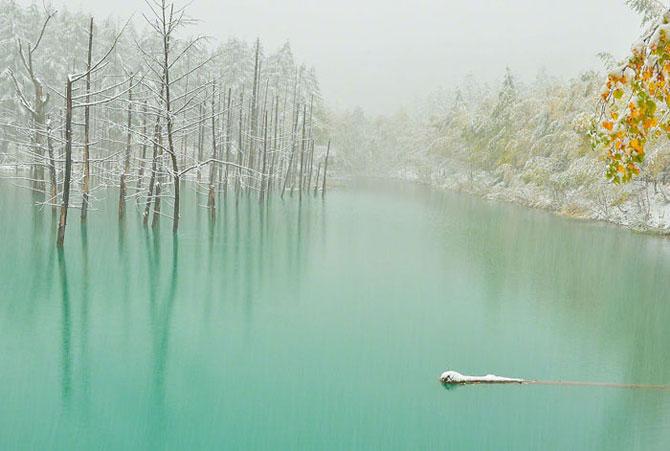 Завораживающая красота небесно-голубых вод пруда на Хоккайдо