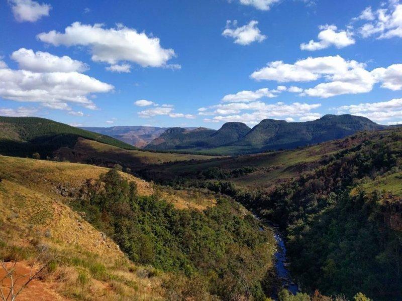 Перспективно и безопасно: южноафриканские буры могут заняться фермерством в России