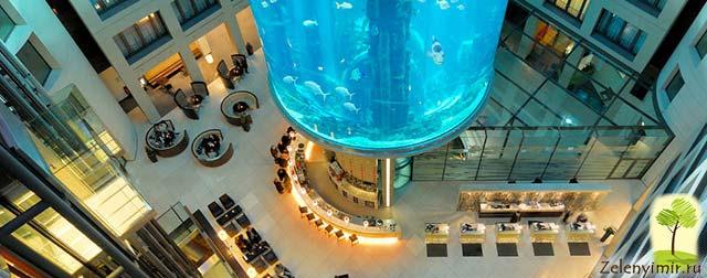 """Самый огромный аквариум в мире - """"Аквадом"""" в Берлине, Германия - 10"""