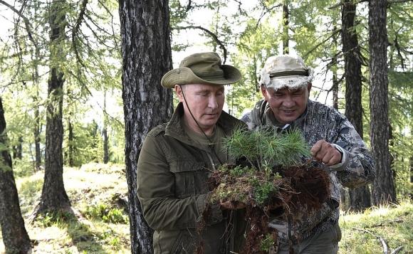 Песков  не знает, какого производителя и бренда носит куртку Путин