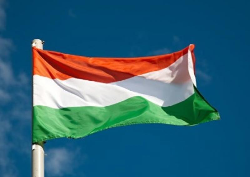 В Мукачево с ратуши сорвали государственный флаг. Хотят венгерский