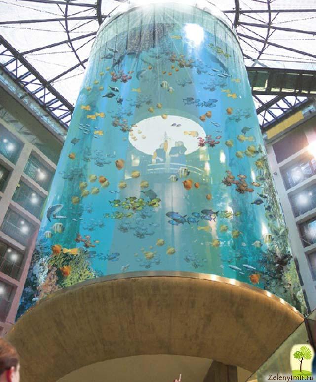 """Самый огромный аквариум в мире - """"Аквадом"""" в Берлине, Германия - 7"""
