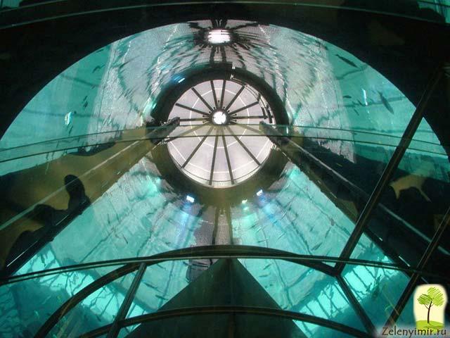 """Самый огромный аквариум в мире - """"Аквадом"""" в Берлине, Германия - 13"""