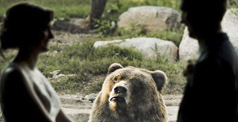 Медведь сделал свадьбу незабываемой