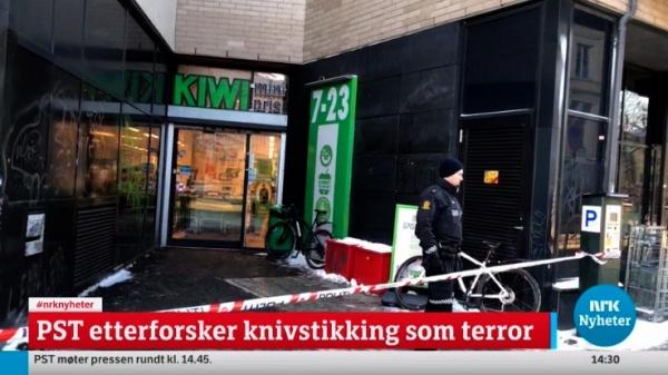 ВНорвегии арестован граждан…