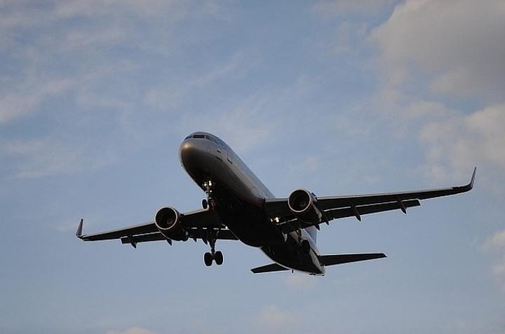 Птица попала в двигатель Boeinga перед посадкой