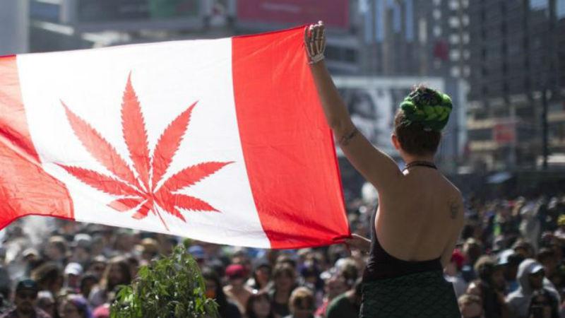 Канадский сенат проголосовал за легалайз