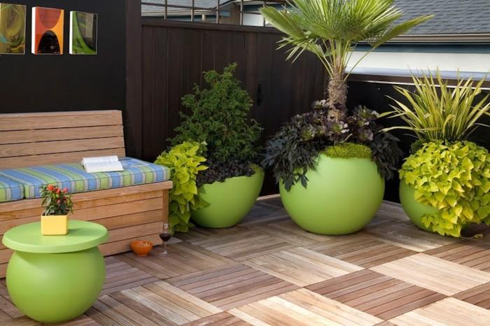 20 восхитительных деревьев в горшках дома и на даче, которые удивят гостей и соседей