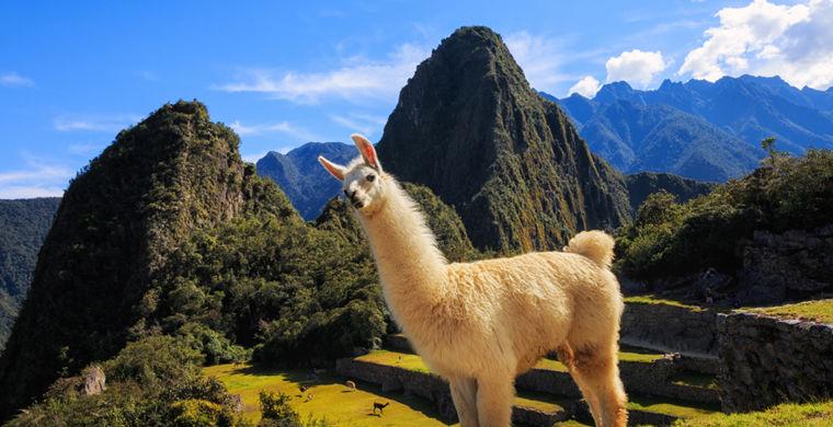 Составлен список популярных туристических направлений