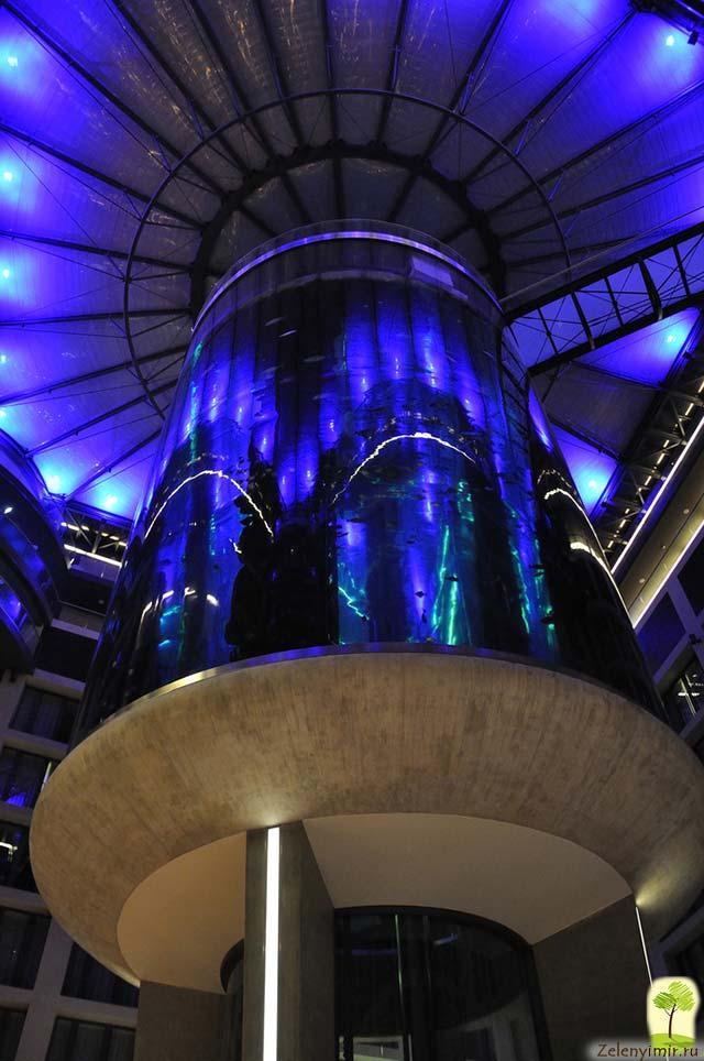 """Самый огромный аквариум в мире - """"Аквадом"""" в Берлине, Германия - 18"""