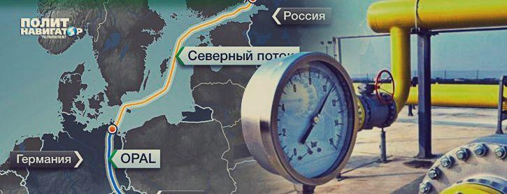 «Готовимся к худшему»: «Нафтогаз Украины» капитулировал перед «Северным потоком-2»