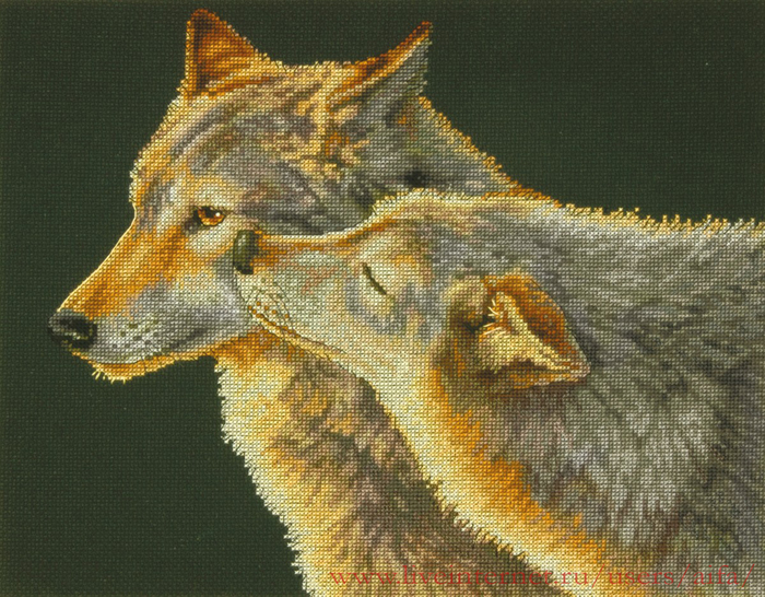 ВЫШИВАЙКА. Поцелуй волков