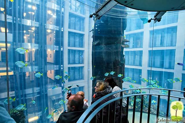 """Самый огромный аквариум в мире - """"Аквадом"""" в Берлине, Германия - 14"""