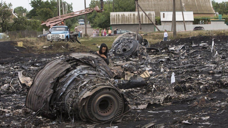 Политолог объяснил «удивительное прозрение» Нидерландов по делу MH17