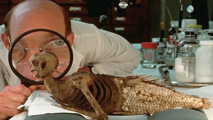 Научная мистификация: фиджийская русалка.