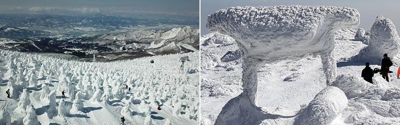Снежные монстры горы Зао в центральной части Японии