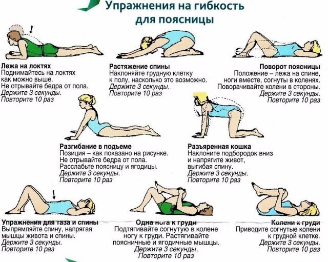 Упражнения для поясницы спины в домашних условиях