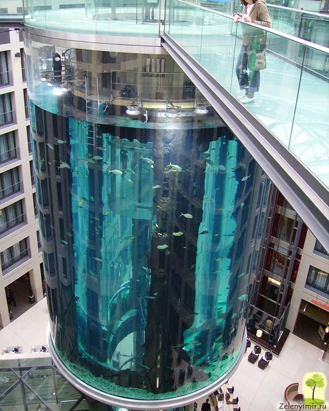 """Самый огромный аквариум в мире - """"Аквадом"""" в Берлине, Германия - 16"""