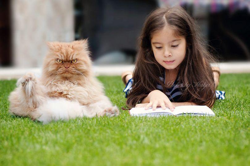 Самый серьезный кот в мире — Гaрфи.