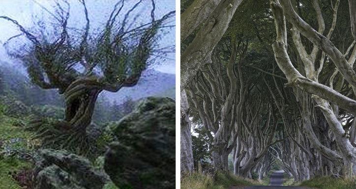 16 магических мест планеты, которые стали источником вдохновения для авторов фильмов о Гарри Поттере