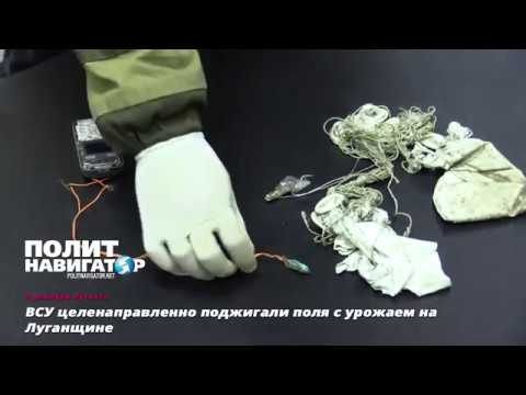 ВСУ целенаправленно поджигали поля с урожаем на Луганщине