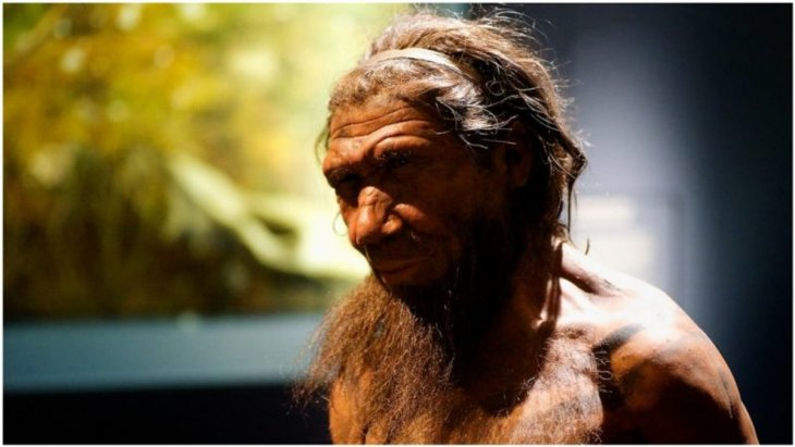 У современного человека 4% ДНК неандертальца