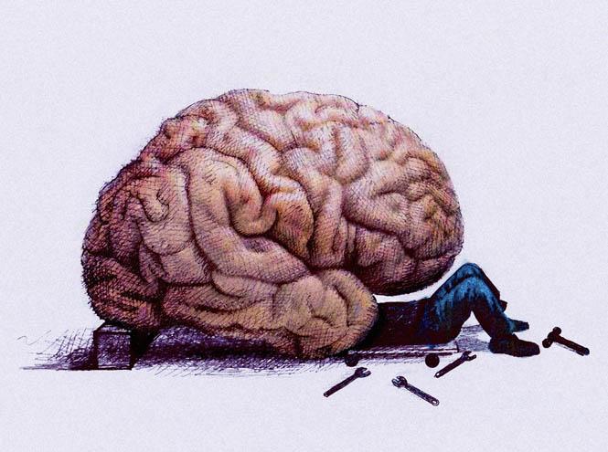 6 способов регенерировать клетки мозга и улучшить его функциональность. Возраст не имеет значения