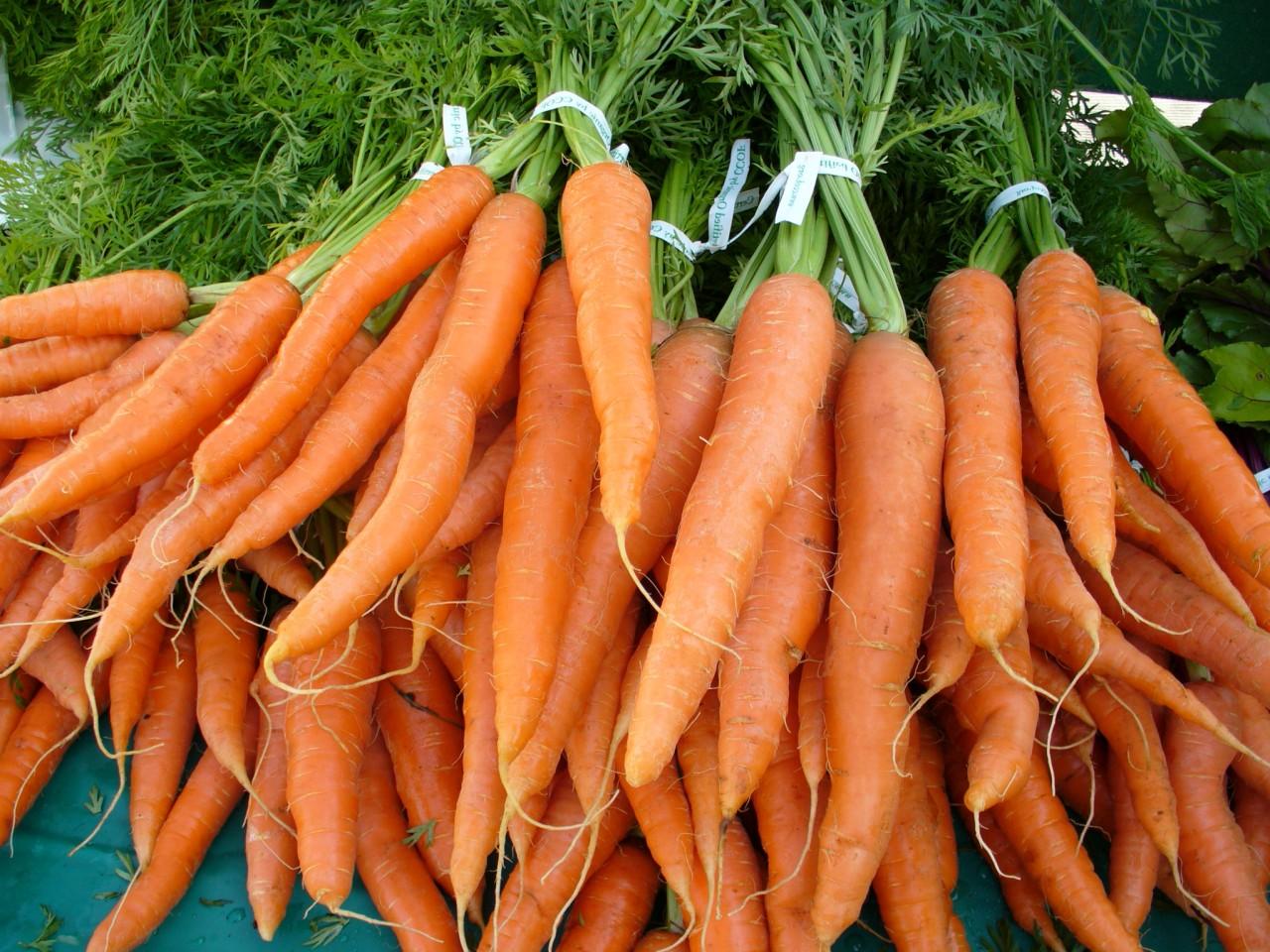 Египетская морковка
