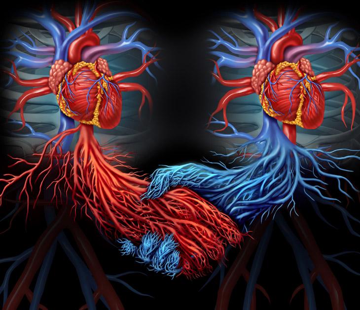 Чудо российской медицины: человек с двумя сердцами