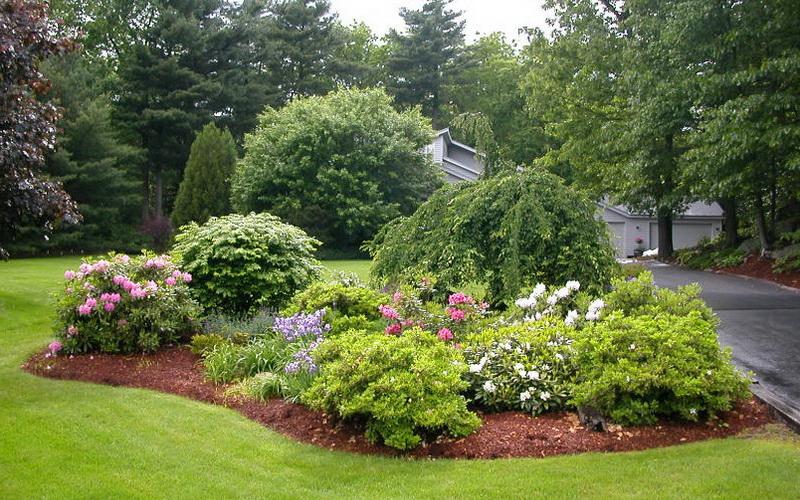 Природный ландшафт в дизайне сада в природном стиле