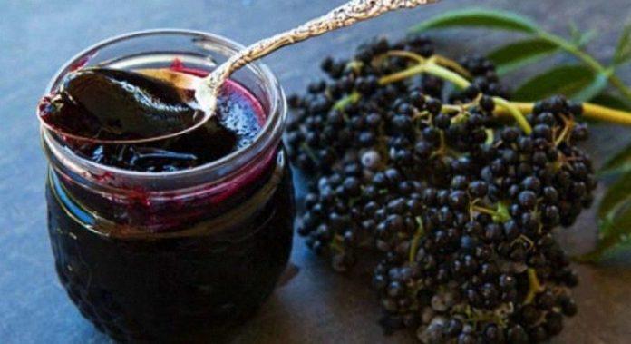 Бузина — самый противовирусный фрукт, известный человеку
