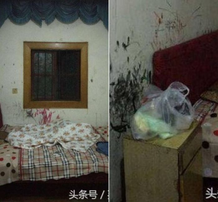 Девушку поселили в ужасной комнате в общежитии. Но она не стала это терпеть и сделала настоящее чудо