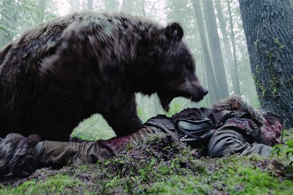 Москвичка провела ночь в лесу с медведем и выжила