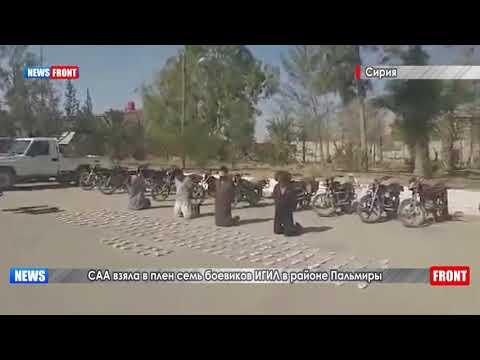САА взяла в плен семь боевиков ИГИЛ в районе Пальмиры
