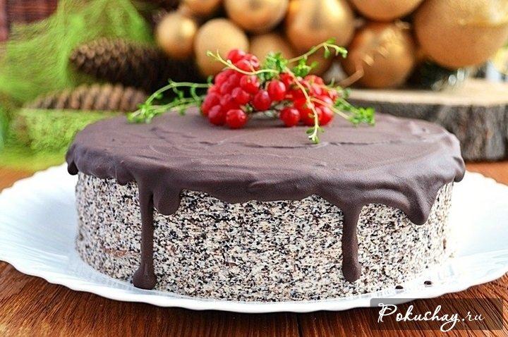 Новогодний торт «Зимний сон»: быстро, вкусно, недорого!