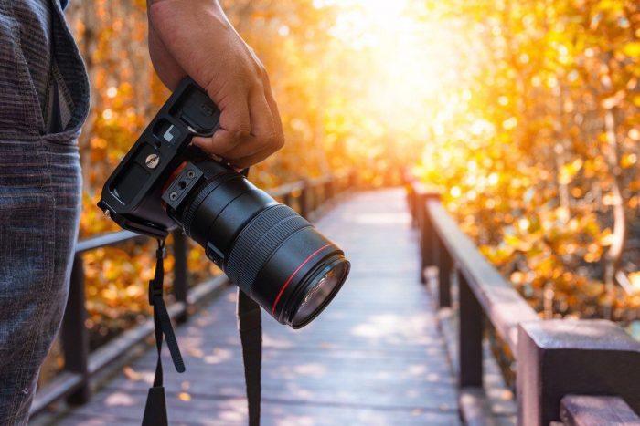 Топ лучших зеркальных фотоаппаратов на конец 2019 года
