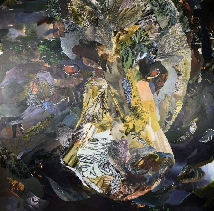Детально выполненный портрет жителя североамериканских лесов.