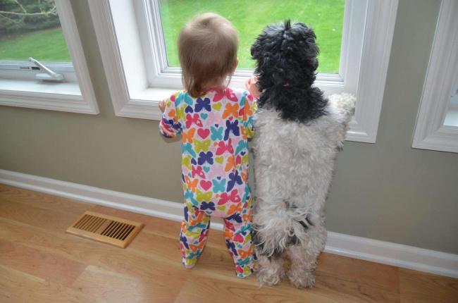 25 доказательств, что детям нужны домашние животные