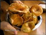 Солёные рыжики от Цептер (Zepter)