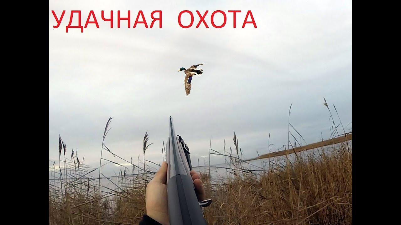 Хитрости утиной охоты