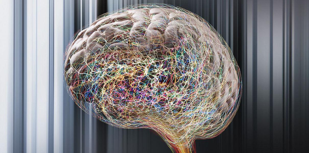 В мозге обнаружен механизм, отвечающий за творческое мышление