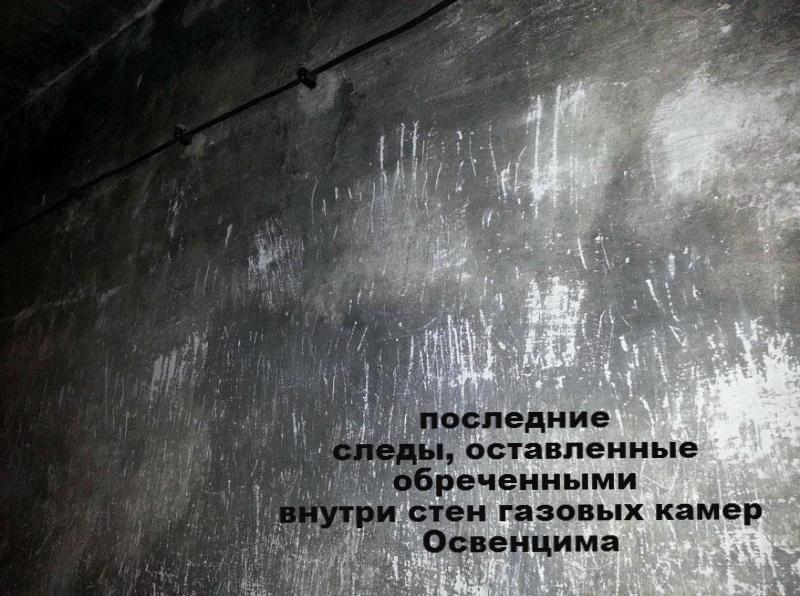 Внутри газовых камер Освенци…