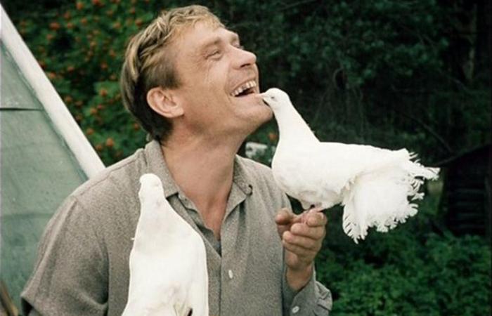 За кадром фильма «Любовь и голуби»: Какие эпизоды вырезала цензура, и почему Меньшова обвиняли в отсутствии вкуса