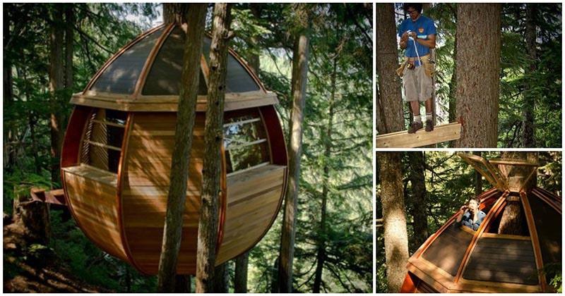 В гармонии с природой: оригинальный домик на дереве, родом из сказки