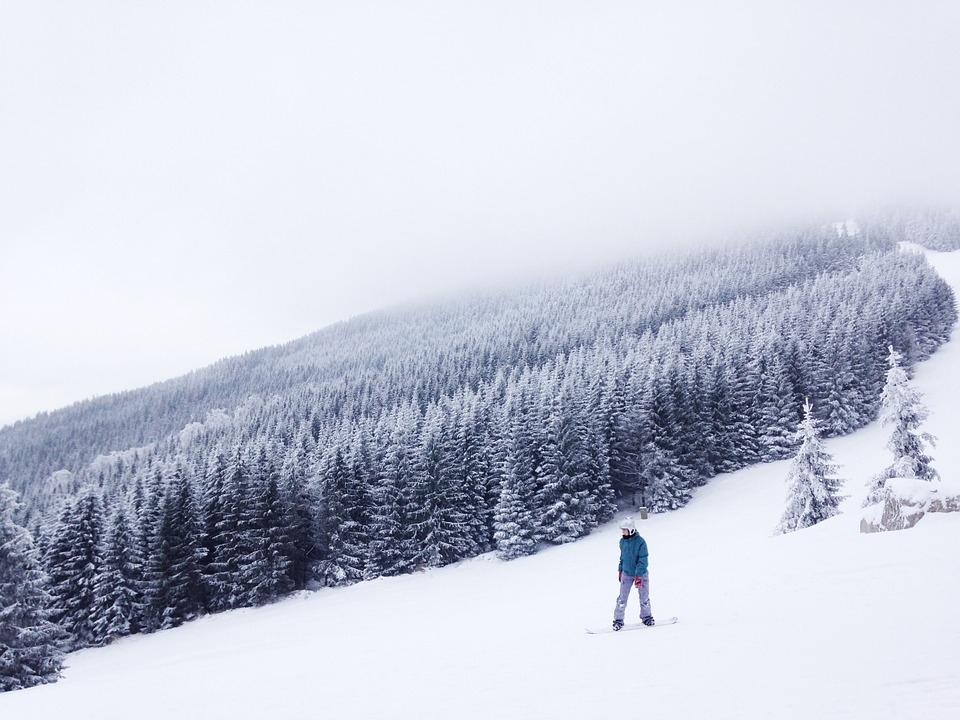 Подборка Instagram. Вишневая гора