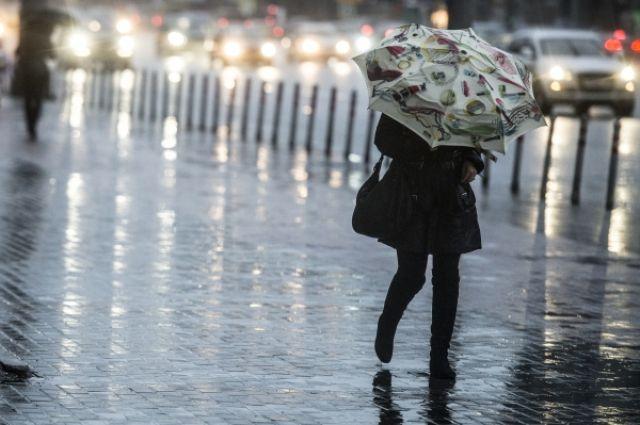 Минувший декабрь стал самым темным за всю историю метеонаблюдений в Москве