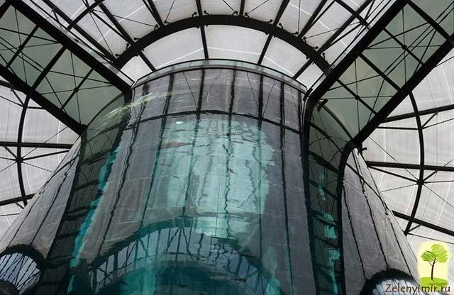 """Самый огромный аквариум в мире - """"Аквадом"""" в Берлине, Германия - 6"""